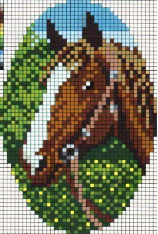 Конь и роза предпросмотр.