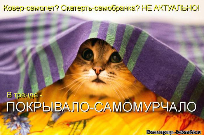 kotomatritsa_jT (700x465, 57Kb)