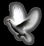 Превью Голуби (34) (141x149, 25Kb)