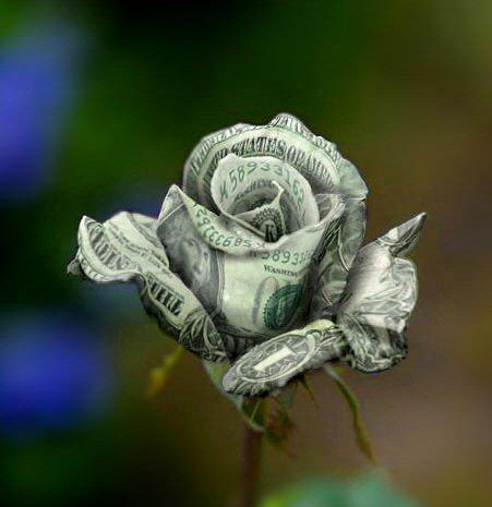 денежная роза (451x465, 29Kb)