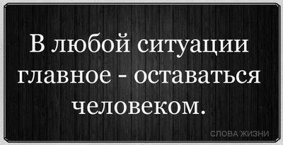 1568_380588505368025_859799722_n (400x205, 18Kb)
