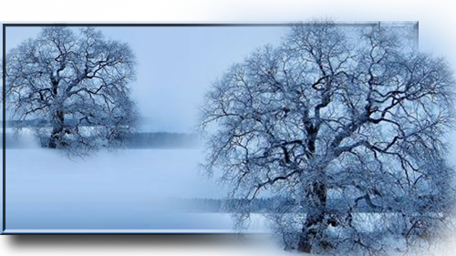Unbenannt-1 (500x281, 242Kb)