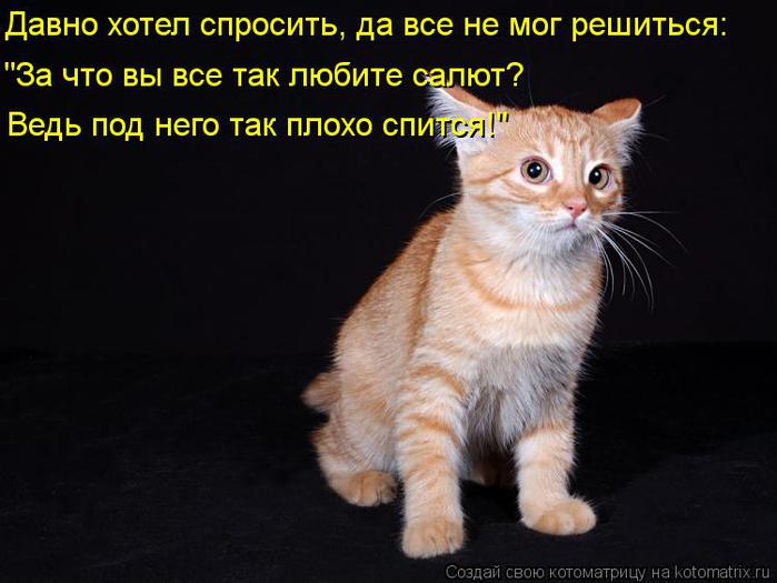 kotomatritsa_n- (700x525, 43Kb)