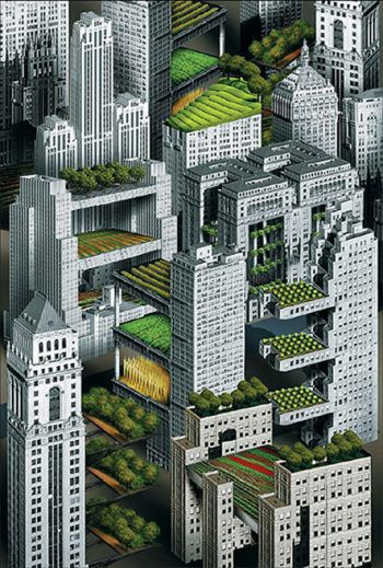 350x519-images-stories2-863-Chinas_Urban_Farms-urban-farms-on-rooftops-in-china2 (350x519, 68Kb)