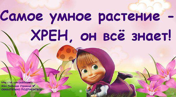 3234145_cd6dcccce944f498786656664d5134e5 (604x333, 49Kb)