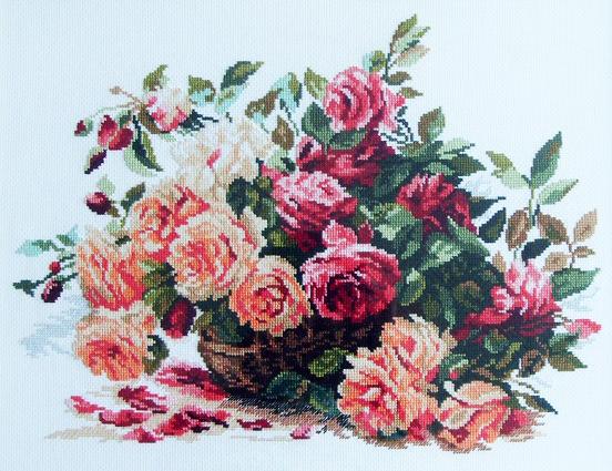 Stitchart-alisa-rozy0 (552x425, 338Kb)