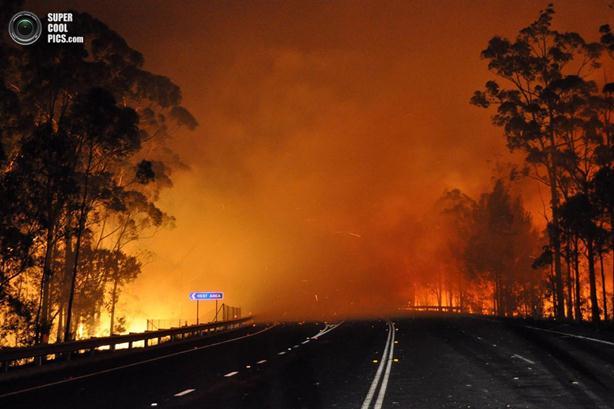 Лесные пожары в Австралии бушуют из-за жары. Фотографии