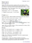 Превью 401 (519x700, 282Kb)