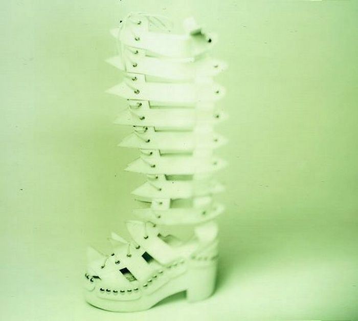 Смешная обувь со всего света 14 (700x627, 25Kb)