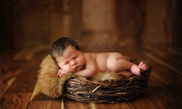 спящие младенцы Tracy Raver 15 (640x385, 134Kb)