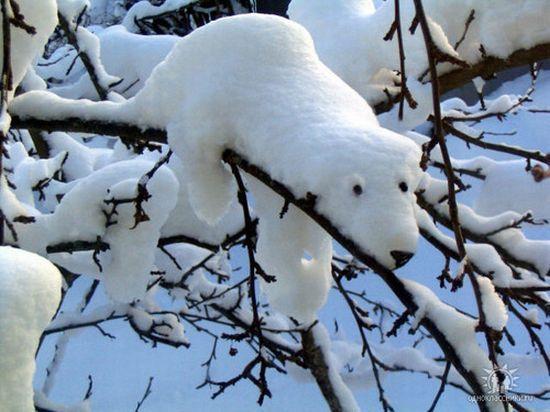 Россия будет отмечать день снега  - фото 4