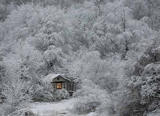снег2 (554x403, 140Kb)
