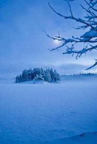 снег6 (200x296, 12Kb)