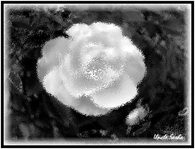 Rose (638x489, 155Kb)