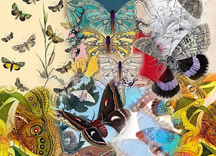 Collage (700x504, 239Kb)
