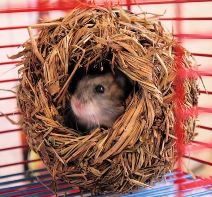 Фото тепла в домашних условиях