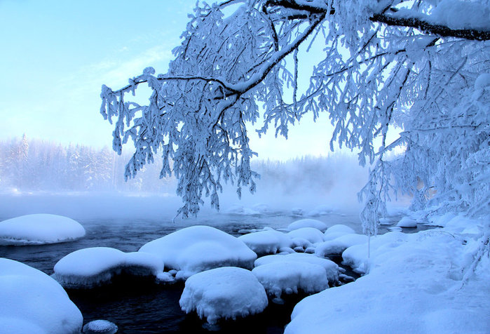 4080226_73991716_blue_winter_by_karild3a1hr0 (699x476, 105Kb)