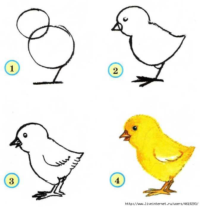 Они живут в специально для них построенном доме, который называется голубятня.  Голуби очень умные птицы...