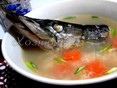 Суп из головы щуки рецепт с фото