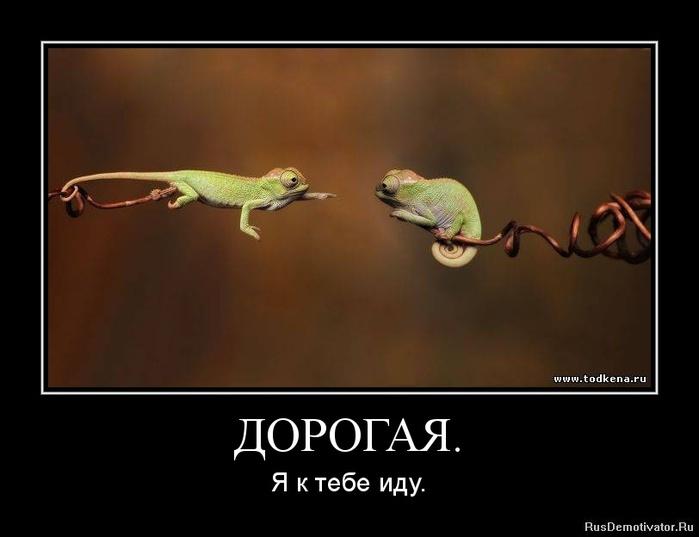 1347230513-dorogaya. (700x537, 55Kb)