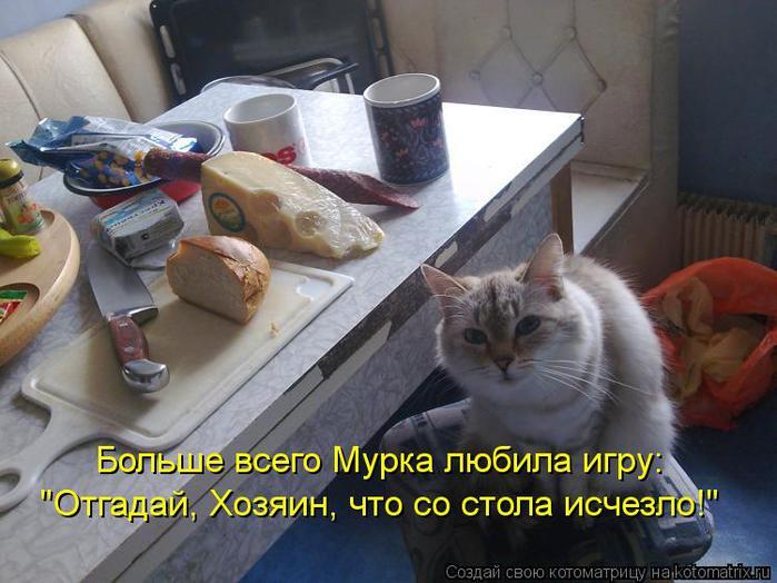 kotomatritsa_pKT (700x524, 58Kb)
