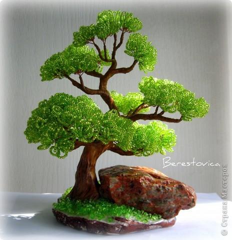 """Jun 23, 2012 - Красное дерево бонсай  """"Золотое сердце """" из бисера, проволоки и гипса.  Пошаговый мастер-класс его..."""