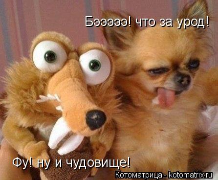 3821971_kotomatritsa_Ms (446x368, 31Kb)