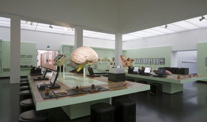 Немецкий музей гигиены (нем. Deutsches Hygiene-Museum) в Дрездене. 50050
