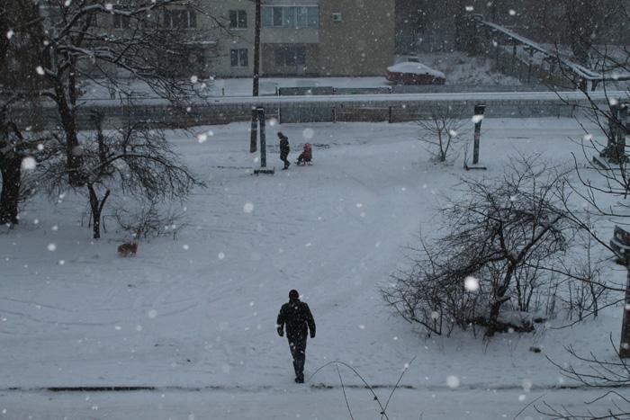 Снег (700x467, 151Kb)