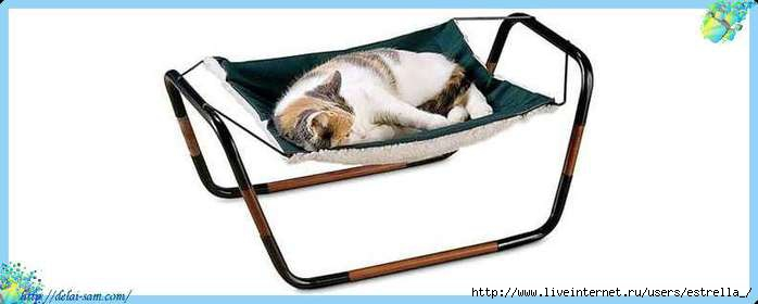 cat-hammock-xl (700x280, 63Kb)