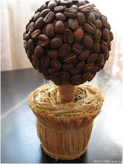 кофейное дерево (504x671, 141Kb)