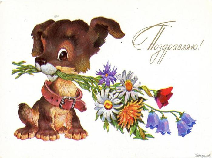 ПЕРС +КИРЁК+ТИГРА и Женёк)))))) - Страница 6 96076227_berloganet808202206