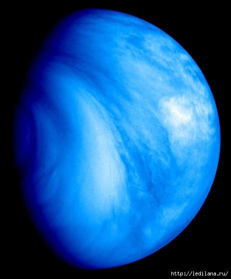 Венера (461x557, 99Kb)
