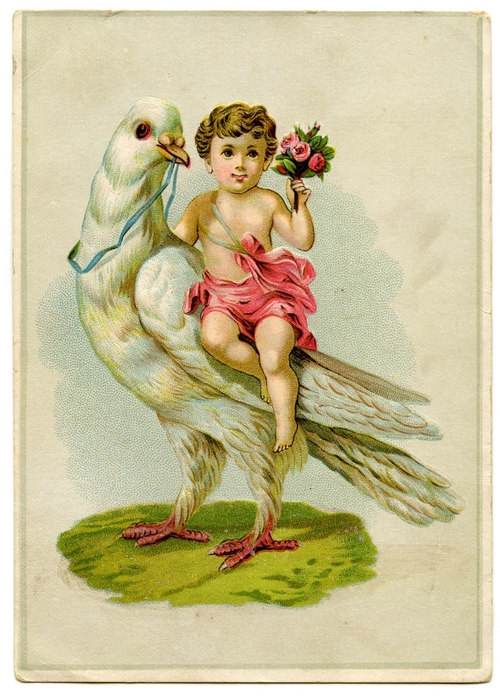 cherub with dove GraphicsFairy009 (500x700, 289Kb)
