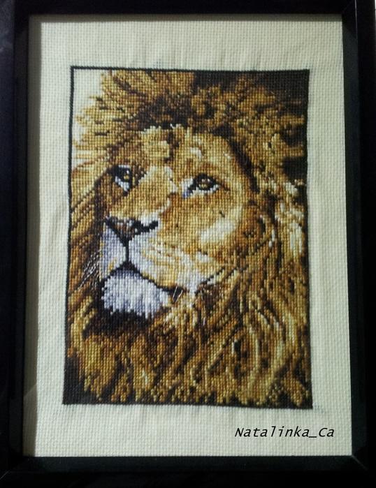 вышивка лев/1359443305_20130129_064606 (538x700, 152Kb)
