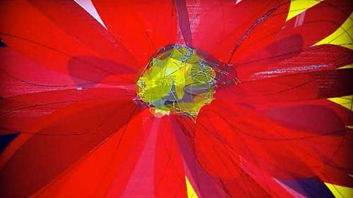 В Великобритании парализованная художница рисует глазами Фотографии