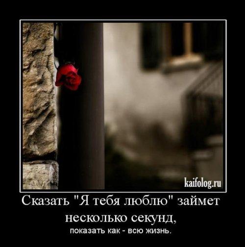 1265705110_122 (500x504, 35Kb)