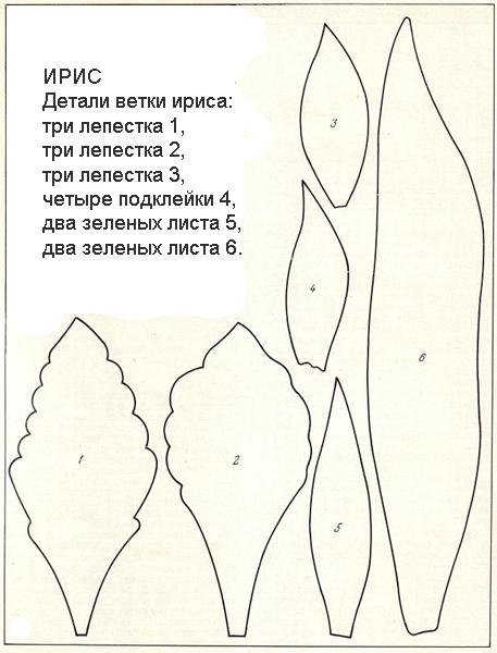 13-IRIS (457x600, 166Kb)