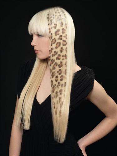 hairprofi (375x500, 30Kb)