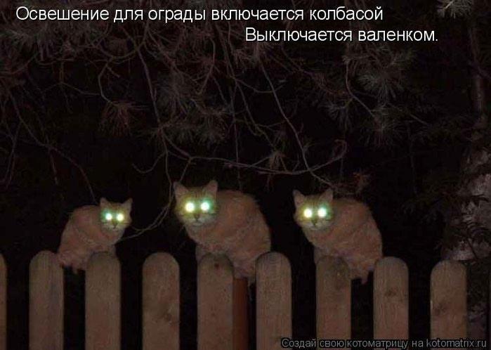 http://img1.liveinternet.ru/images/attach/c/7/96/86/96086263_1348819772_d4.jpg