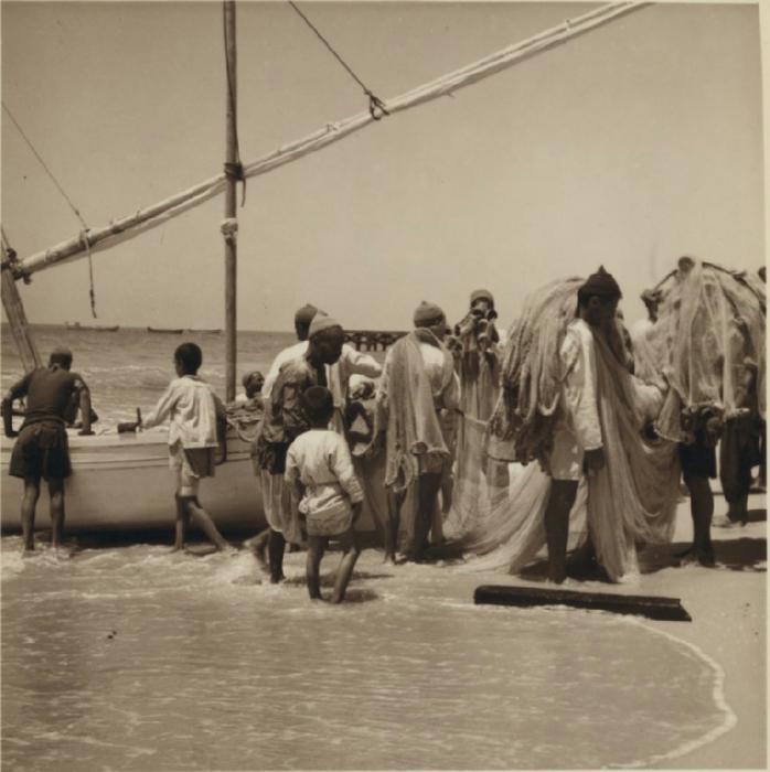 9 Разгрузка рыбы в секторе Газа. 3 июля (698x700, 299Kb)