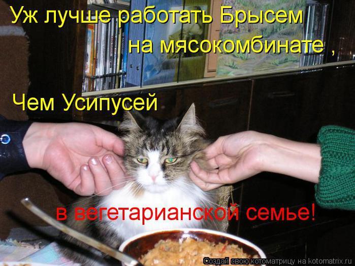 kotomatritsa_Cq (700x524, 70Kb)