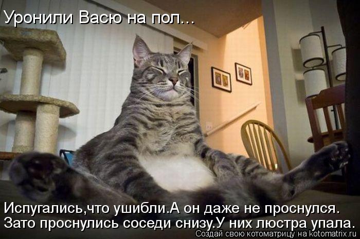 kotomatritsa_yx (700x466, 57Kb)