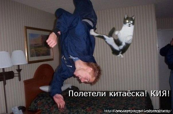 kotomatritsa_62 (604x398, 98Kb)