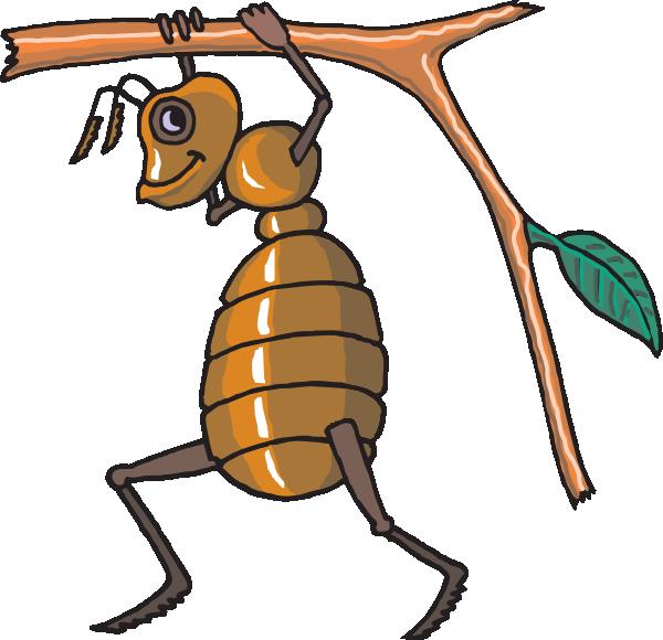 муравей (600x580, 101Kb)