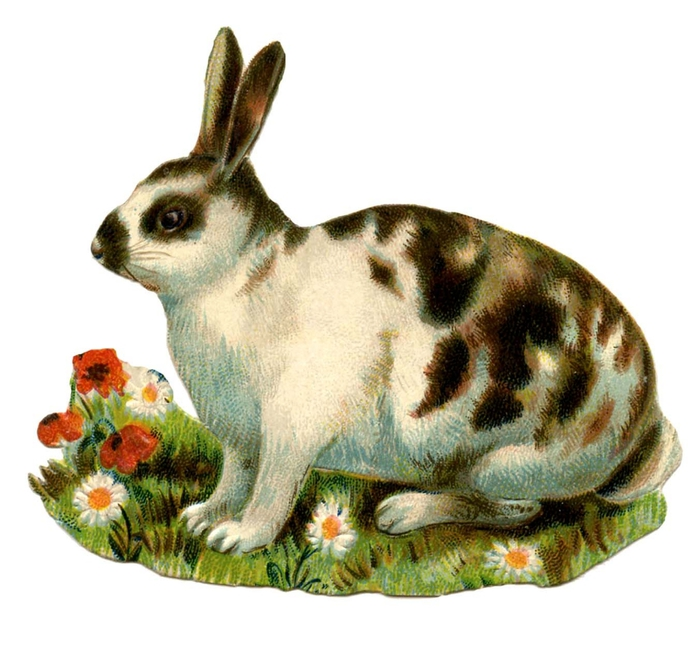 bunny-spotted-Vintage-Image-Graphics-Fairy (700x646, 231Kb)