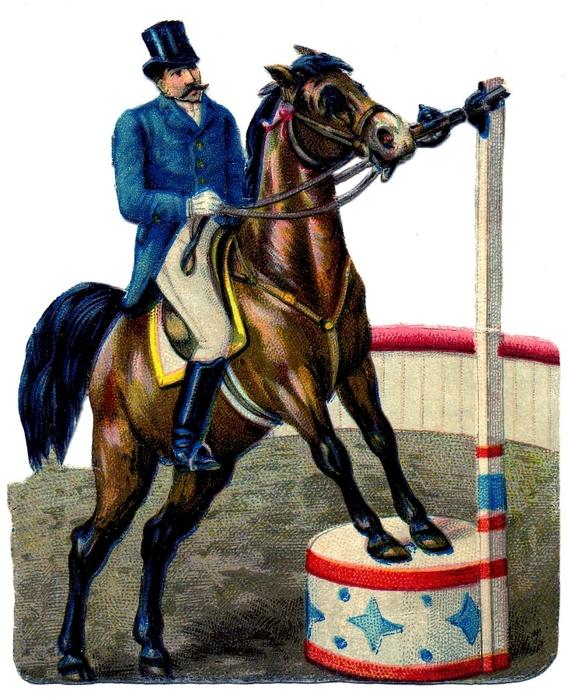 Circus-Horse-Graphics-Fairy (568x700, 311Kb)