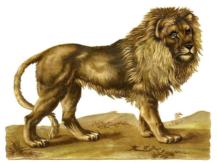 Lion-Vintage-GraphicsFairy (700x527, 244Kb)