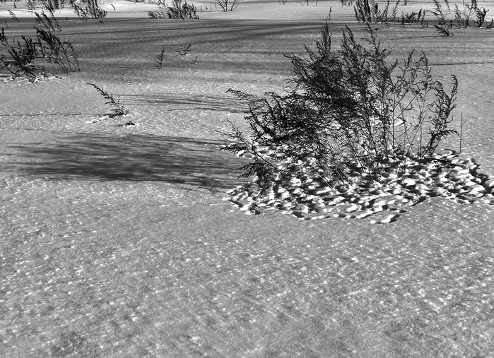 тень, снег, следы (700x507, 245Kb)