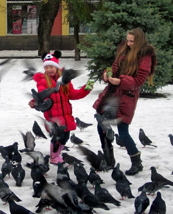 девчонки кормят голубей семечками/683232_reklama_semechek830 (567x700, 320Kb)